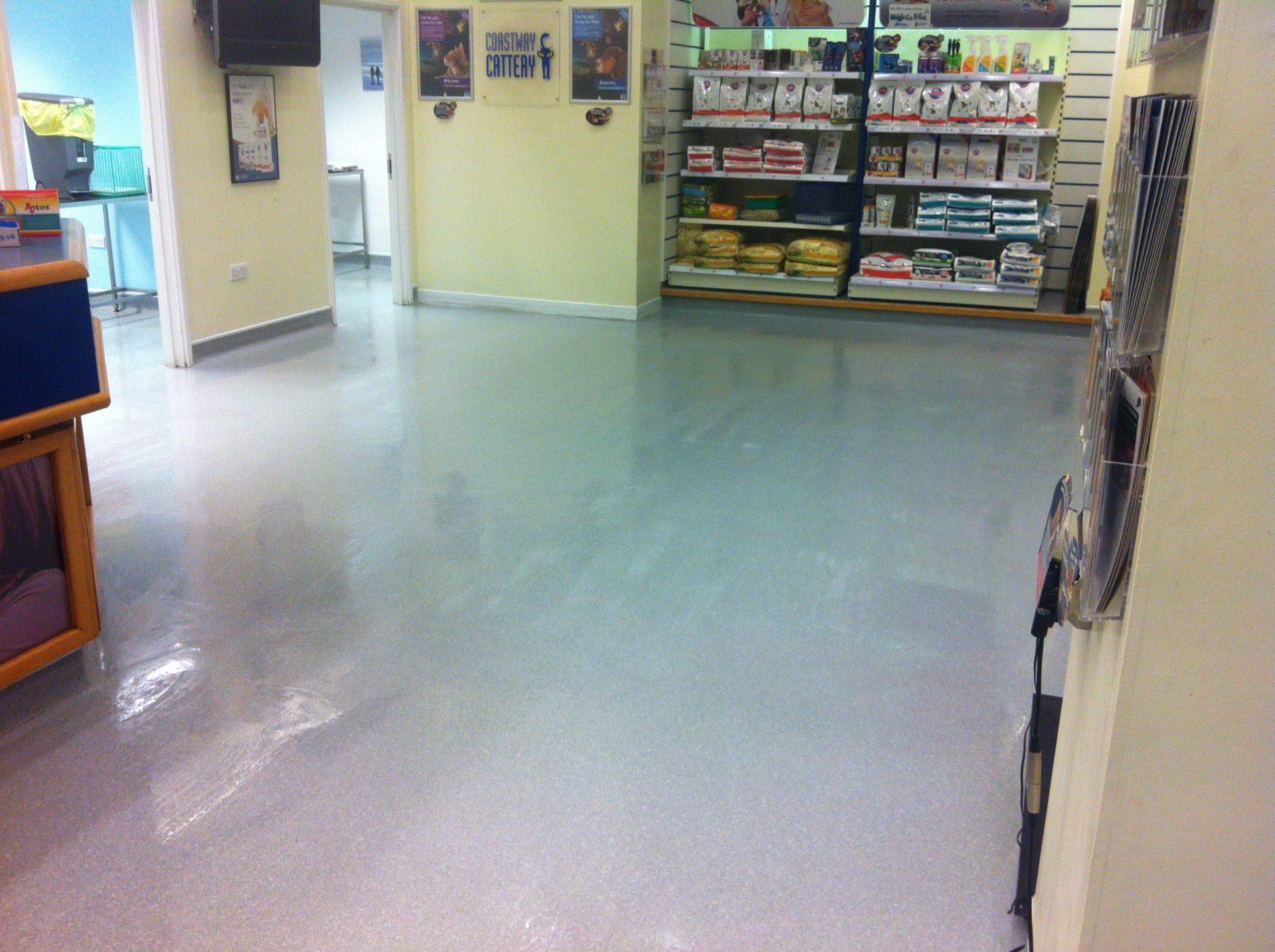 Vet Surgery Vinyl Floor Cleaning Sanitising Brighton