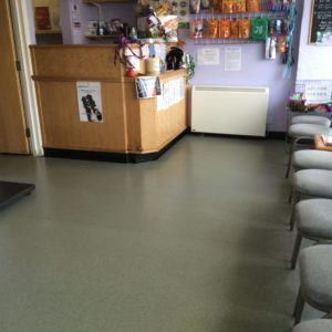 Altro non slip Vinyl floor cleaning sealing sanitising Lancing East Sussex