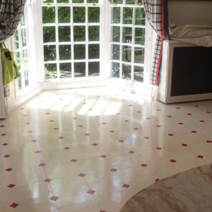 Kitchen Vinyl floor cleaner cleaning stripping sealer sealing company East Sussex Hampshire Kent Surrey